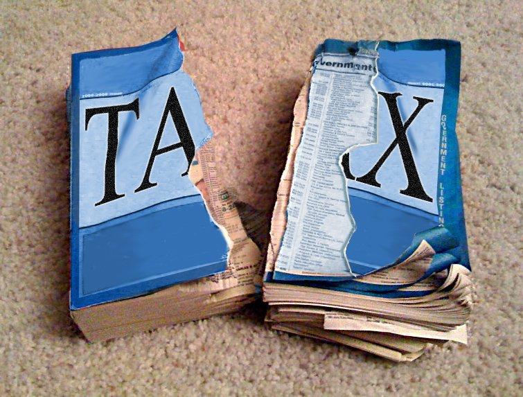 Tax avoidance should be criminalised